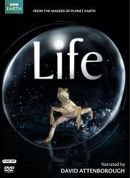 DVD Life